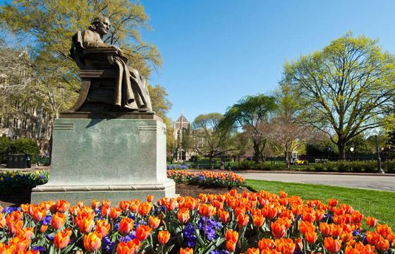 950_47_John-Carroll-Spring-Tulips-optimized
