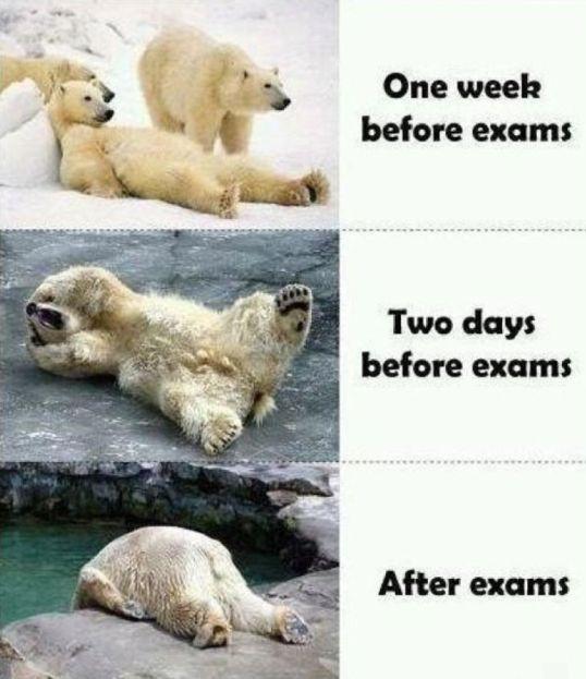 final-exam-meme