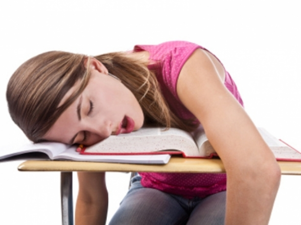 girl-sleeping-funny-wallpaper