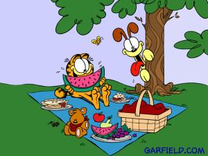 garfield-s-picnic-wallpaper-garfield-257357_1024_768